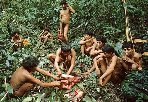 Quest Pathfinders / Yanomami